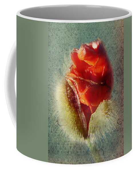 Colorful Flowers Coffee Mug featuring the photograph Poppy by Heike Hultsch