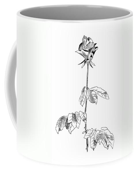Rose Coffee Mug featuring the drawing Rose by Masha Batkova