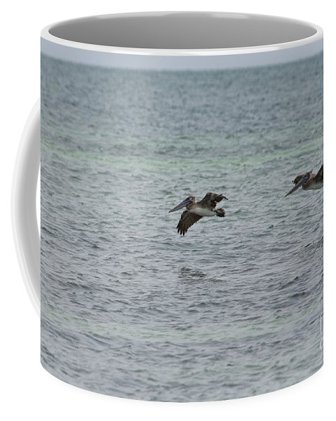 Animals Coffee Mug featuring the digital art Scenes From Key West by Carol Ailles