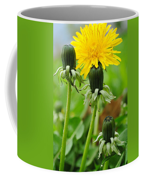 Dandelion Coffee Mug featuring the photograph Standing Tall by Frozen in Time Fine Art Photography