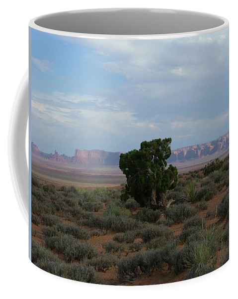 Digital Photography Coffee Mug featuring the photograph Still Life In The Desert by Sian Lindemann