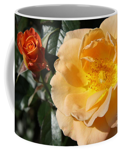 Rose Coffee Mug featuring the photograph Summer's Rose Love by Christiane Schulze Art And Photography