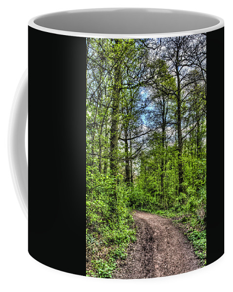 Forest Coffee Mug featuring the photograph The Forest Path by David Pyatt