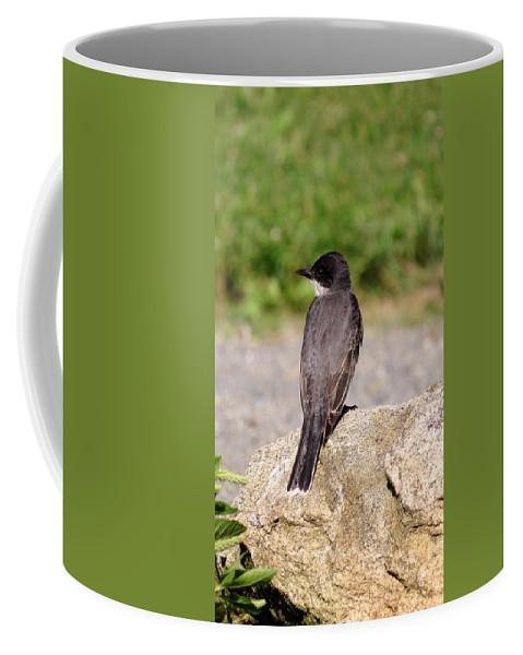 Bird Coffee Mug featuring the photograph The King by Art Dingo