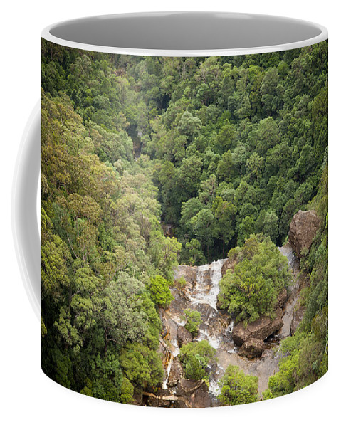 Australia Coffee Mug featuring the photograph Waterfall Valley by Tim Hester