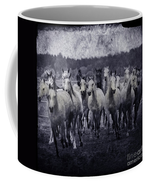 Horse Coffee Mug featuring the photograph White Horses by Angel Tarantella