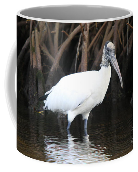 Wood Stork Coffee Mug featuring the photograph Wood Stork In The Swamp by Christiane Schulze Art And Photography
