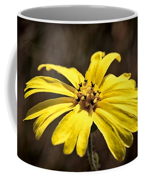 Flower Coffee Mug featuring the photograph Yellow Flower by Betty Depee