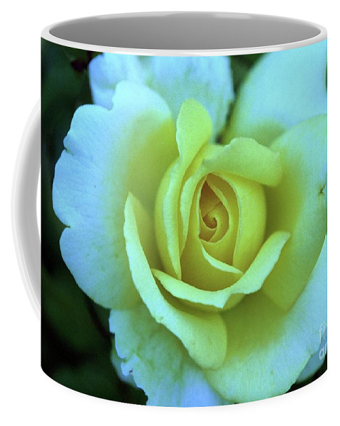 Yellow Rose Coffee Mug featuring the photograph Yellow Rose by Allen Beatty
