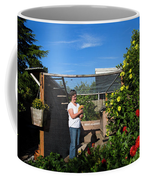 30-34 Years Coffee Mug featuring the photograph A Backyard Chicken Coop In Austin by Michael Hanson