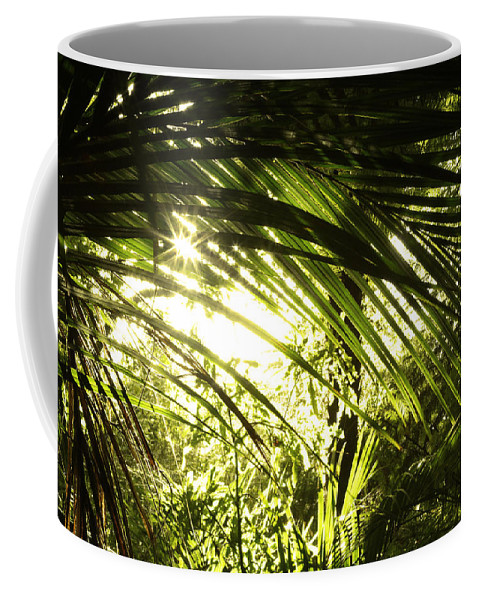 Bush Coffee Mug featuring the photograph Tropical Forest by Les Cunliffe