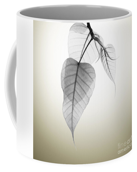 Abstract Coffee Mug featuring the photograph Pho Or Bodhi by Atiketta Sangasaeng