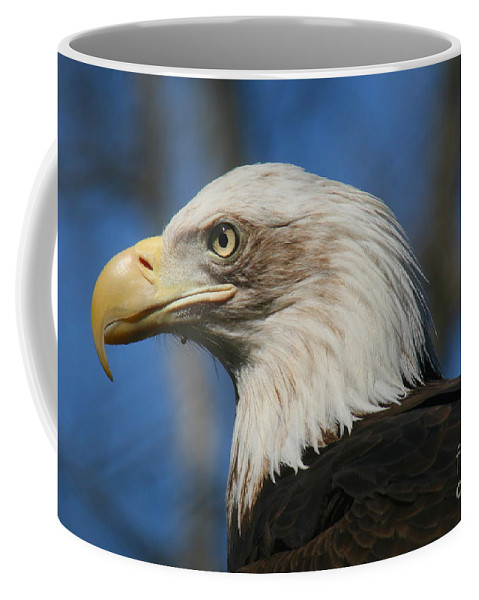 Mature Coffee Mug featuring the photograph Bald Eagle by Ken Keener