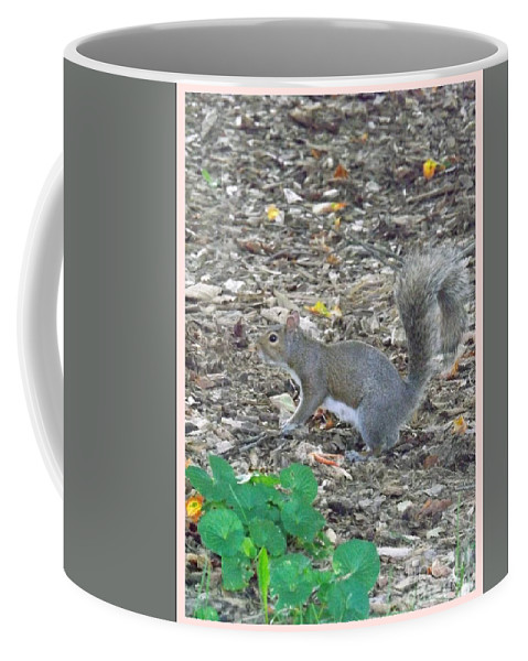 Rodent Coffee Mug featuring the photograph Blending In by Sara Raber
