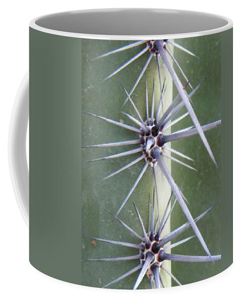 Cactus Coffee Mug featuring the photograph Cactus Thorns by Deb Halloran