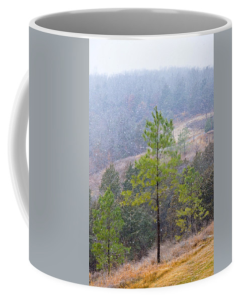 Snow Coffee Mug featuring the photograph First Snow by Cindy Tiefenbrunn