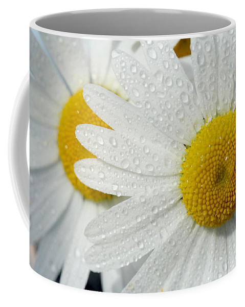 Flower Coffee Mug featuring the photograph Flower by Heike Hultsch