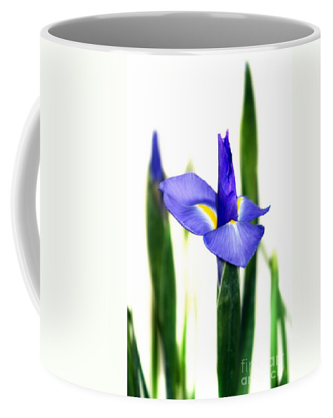 Purple Coffee Mug featuring the photograph Iris by Henrik Lehnerer