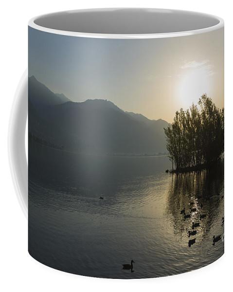 Lake Coffee Mug featuring the photograph Island by Mats Silvan