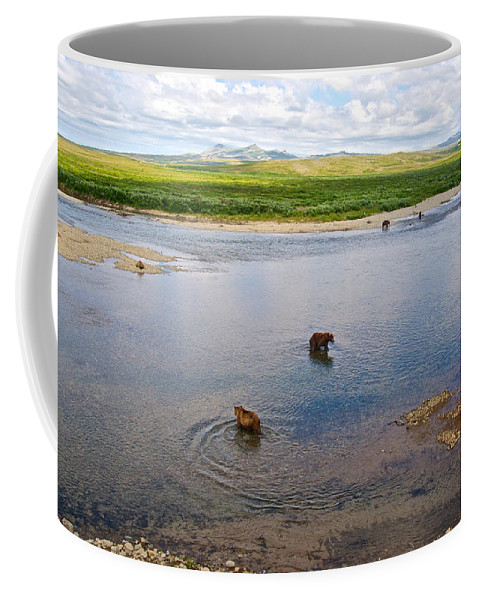 3-lay Of The Land-grizzly Bears In Moraine River Coffee Mug featuring the photograph 3-lay Of Land Grizzly Bears In Moraine River In Katmai National Preserve-ak by Ruth Hager
