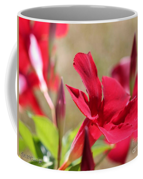 Mccombie Coffee Mug featuring the photograph Mandevilla Named Sun Parasol Crimson by J McCombie