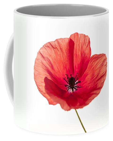 Poppy Coffee Mug featuring the photograph Red Poppy Flower by Elena Elisseeva