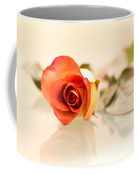 Red Coffee Mug featuring the photograph Red Rose by Elvira Pinkhas