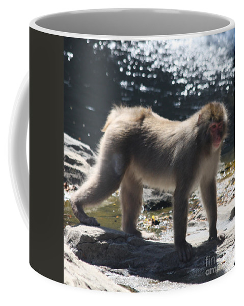 Snow Monkey Coffee Mug featuring the photograph Snow Monkey by John Telfer