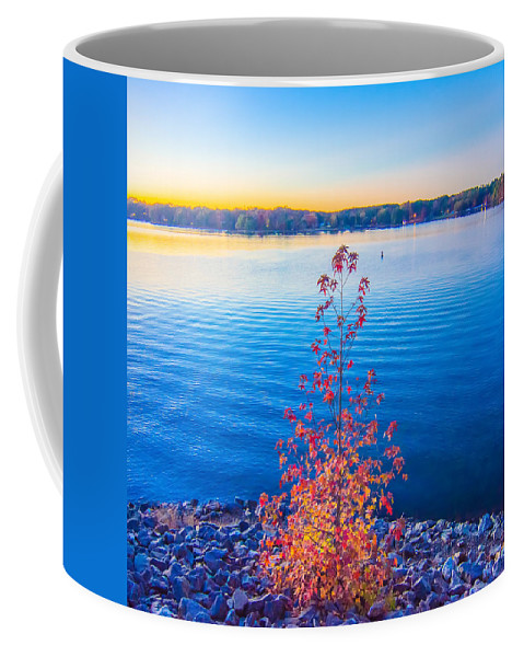 Area Coffee Mug featuring the photograph Sunset At Lake Wylie by Alex Grichenko