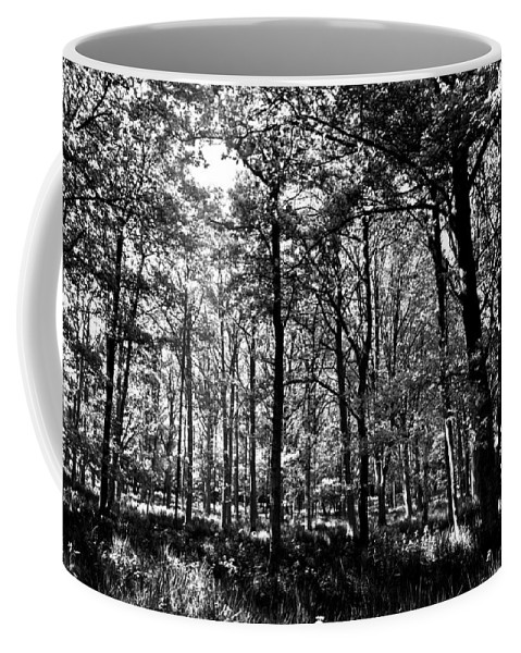 Tree Coffee Mug featuring the photograph The Forest by David Pyatt