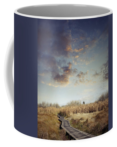 Sky Coffee Mug featuring the photograph Wetland Walk by Les Cunliffe