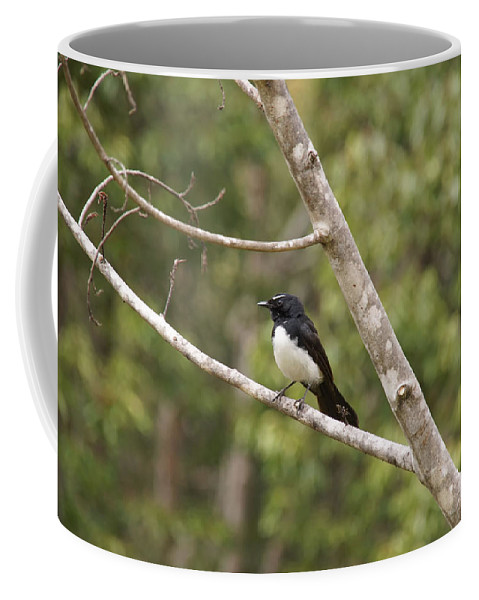 Australia Queensland Qld Coffee Mug featuring the digital art Yungabura Village Scenes by Carol Ailles