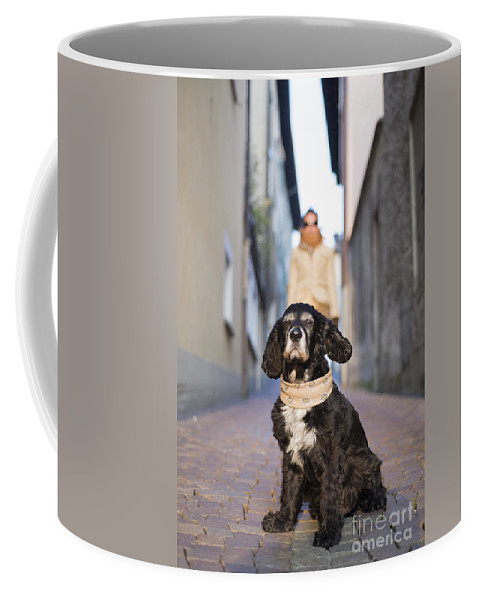 Woman Coffee Mug featuring the photograph Cool Dog by Mats Silvan