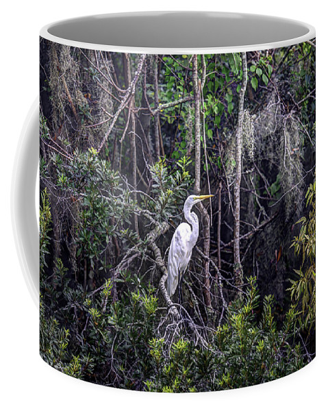 White Heron Coffee Mug featuring the photograph Heron Colors by Dale Powell
