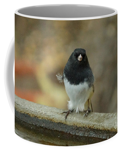 Birds Coffee Mug featuring the photograph Junco by Lori Tordsen