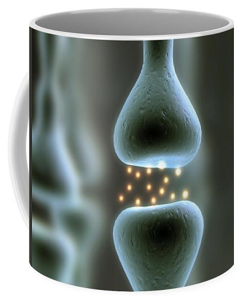 Chiropractor Coffee Mug featuring the digital art Misc. Anatomy Images by Joseph Ventura