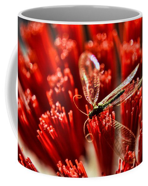 Bug Coffee Mug featuring the photograph Untitled by Adam Vance