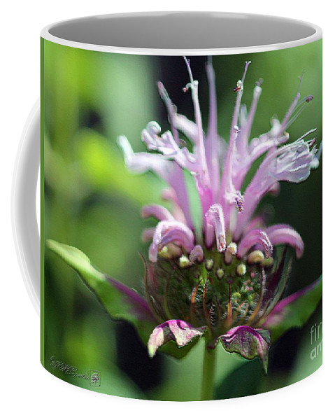 Bee Balm Coffee Mug featuring the digital art Bee Balm From The Panorama Mix by J McCombie
