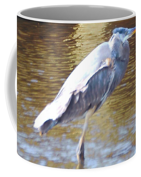 North Ft.myers Coffee Mug featuring the photograph Blue Heron by Robert Floyd