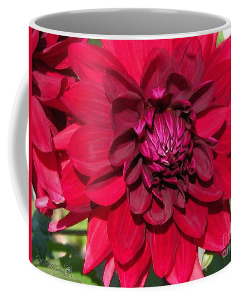 Dahlia Coffee Mug featuring the painting Dahlia Named Nuit D'ete by J McCombie