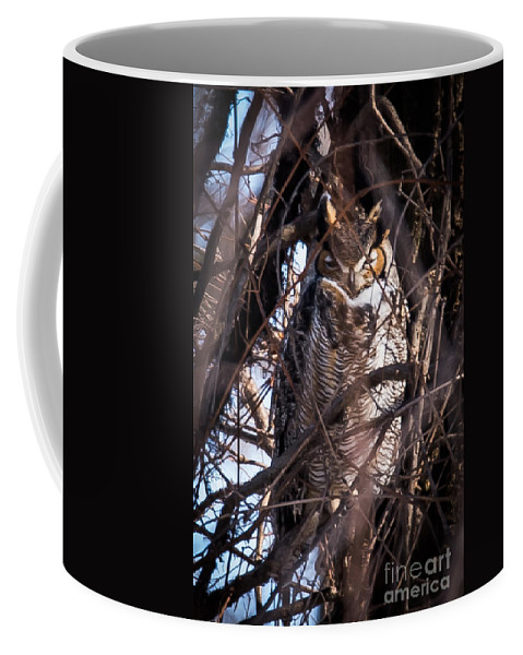Great Horned Owl Coffee Mug featuring the photograph Great Horned Owl by Ronald Grogan