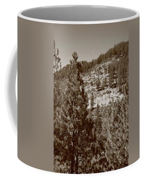 Alpine Coffee Mug featuring the photograph Mountainside Near Lake Tahoe by Frank Romeo