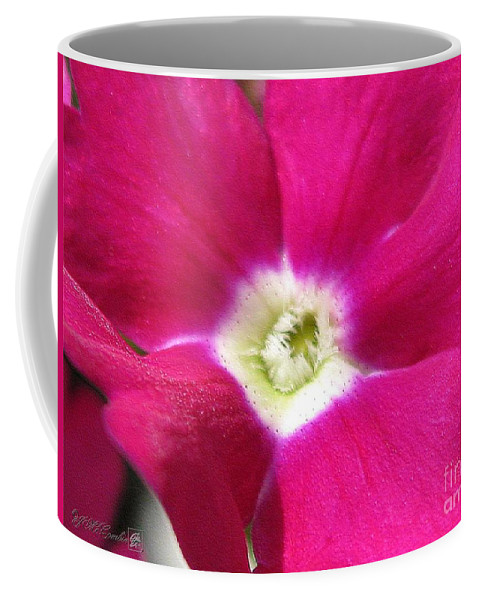 Verbena Coffee Mug featuring the photograph Verbena From The Ideal Florist Mix by J McCombie