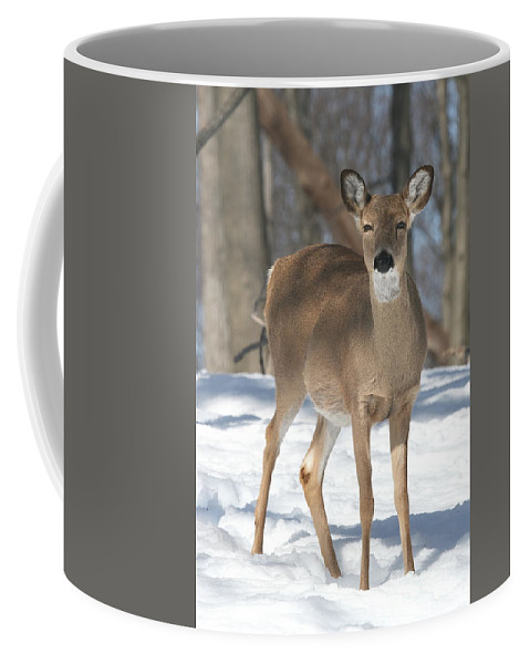 Snow Coffee Mug featuring the photograph White-tailed Deer by Ken Keener