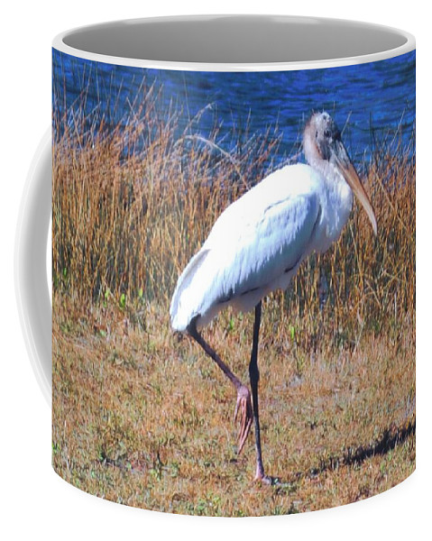 Standing Watch At Lakes Park In Ft.myers Coffee Mug featuring the photograph Woodstork by Robert Floyd