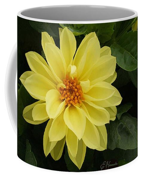 Yellow Dahlia Coffee Mug featuring the painting Yellow Dahlia by Ellen Henneke