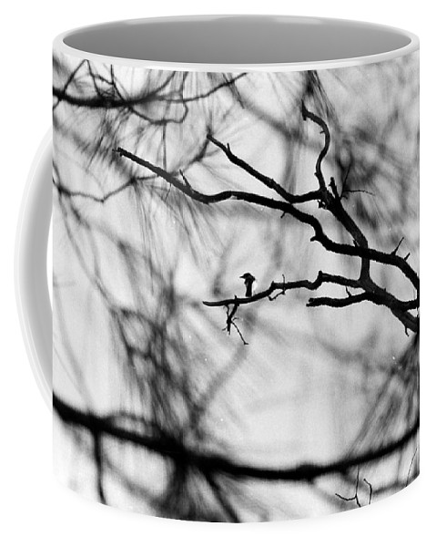 Birds Coffee Mug featuring the photograph Bird In Tree by Karl Rose