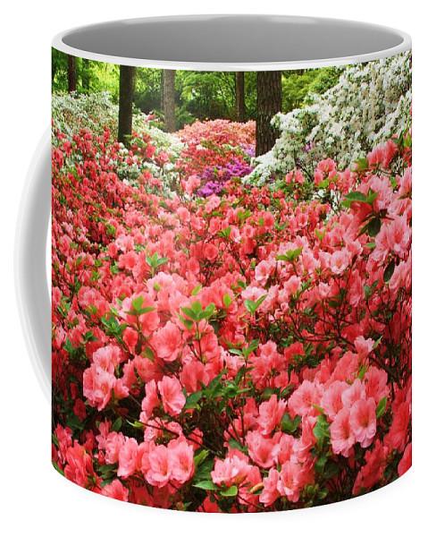 Callaway Gardens Coffee Mug featuring the photograph Callaway Gardens by Mountains to the Sea Photo