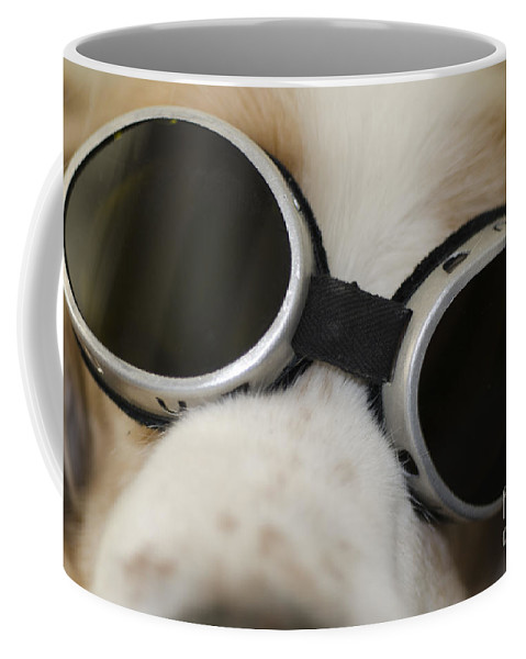 Dog Coffee Mug featuring the photograph Dog With Sunglasses by Mats Silvan