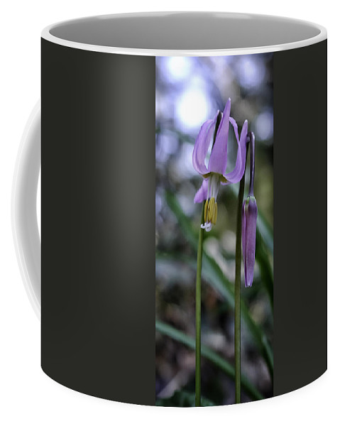 Fawn Lily Coffee Mug featuring the photograph Fawn Lily by Betty Depee